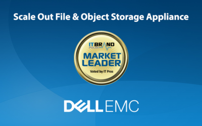 2020 Storage Leaders: Scale Out File & Object Storage Appliances