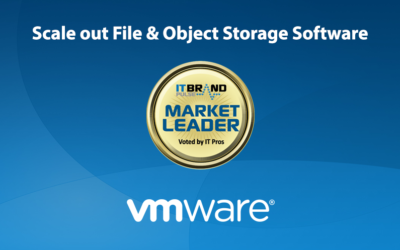 2019 Storage Leaders: Scale-out File & Object Storage Software