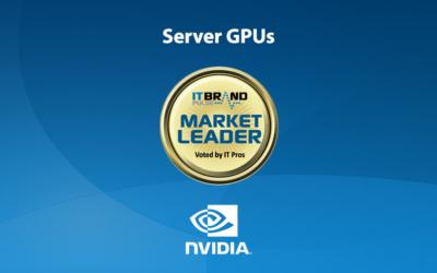 2019 Servers Leaders: Server GPUs