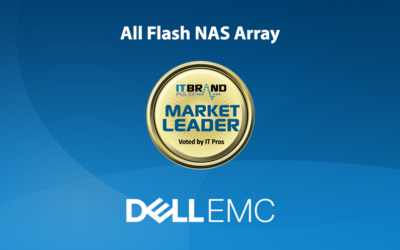 2019 Flash Leaders: All Flash NAS Array