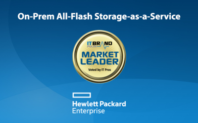 2019 Flash Leaders: On-Prem All-Flash Storage-as-a-Service