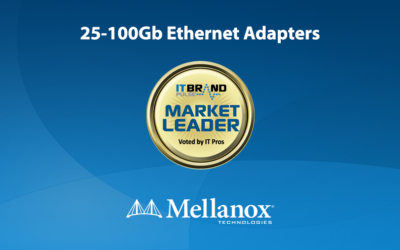 2020 Networking Leaders: 25-100Gb Ethernet Adapters