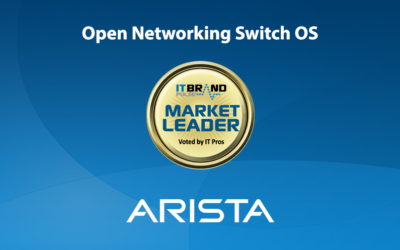 2020 Networking Leaders: Open Networking Switch OS